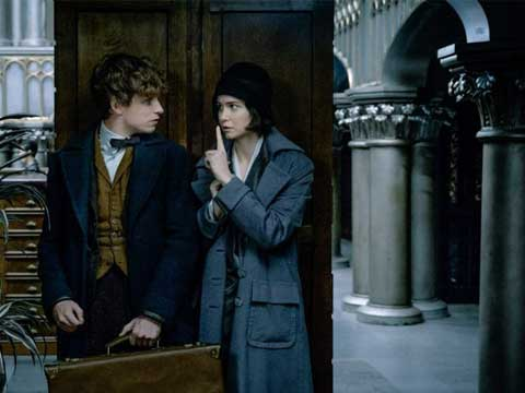 Warner Bros to launch Fantastic Beasts apparel range