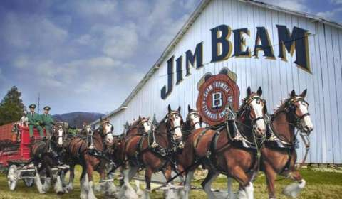 Happy days ahead as Jim Beam pairs up with Budweiser
