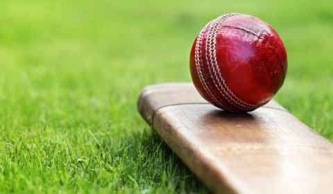Game developers cash in on Cricket fever