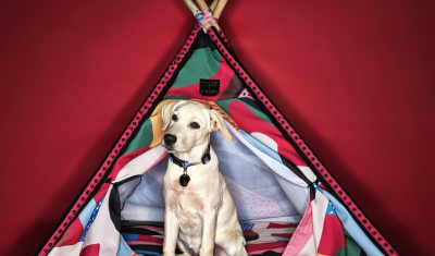 HUFT GIVES PET MERCHANDISE A NEW SPIN